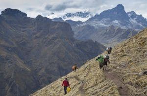 Lares Trek - Saywas Expeditions - 14